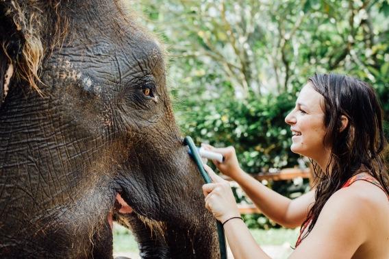 LUVLENS_ELEPHANT SAFARI PARK_INDONESIA-236